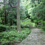 熊野古道のコースや所要時間、初心者にもおすすめは?