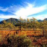 戦場ヶ原をハイキング!服装、おすすめハイキングコース、紅葉の見ごろ時期を押さえておこう!