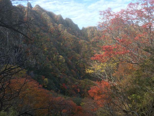 阿蘇根子岳4