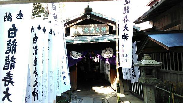 洲崎神社4