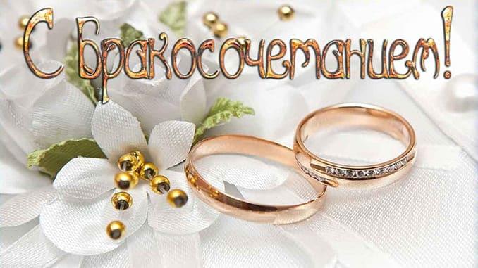 Минутка трогательного красноречия поздравления с подачей заявления в ЗАГС и регистрацией брака