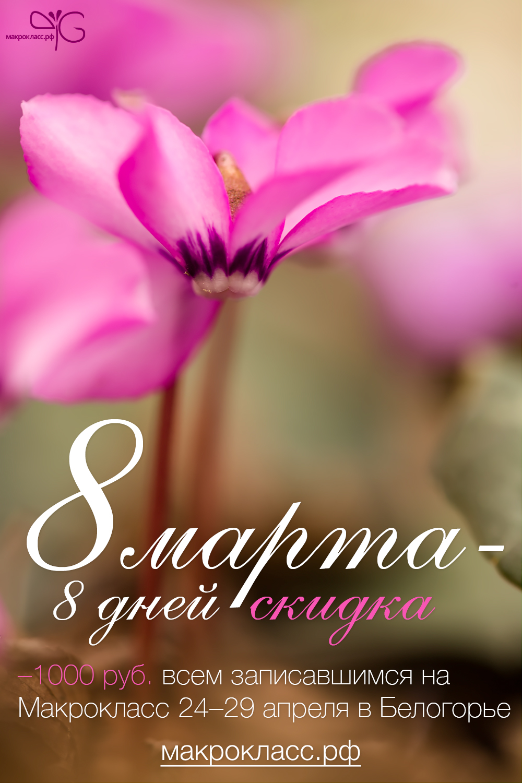 Скидка 1000 руб. на участие в Макроклассе 24-29 апреля 2015 г. (на фото – Cyclamen coum subsp. caucasicum)