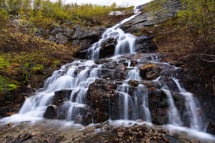 Широкий Дихотомический водопад