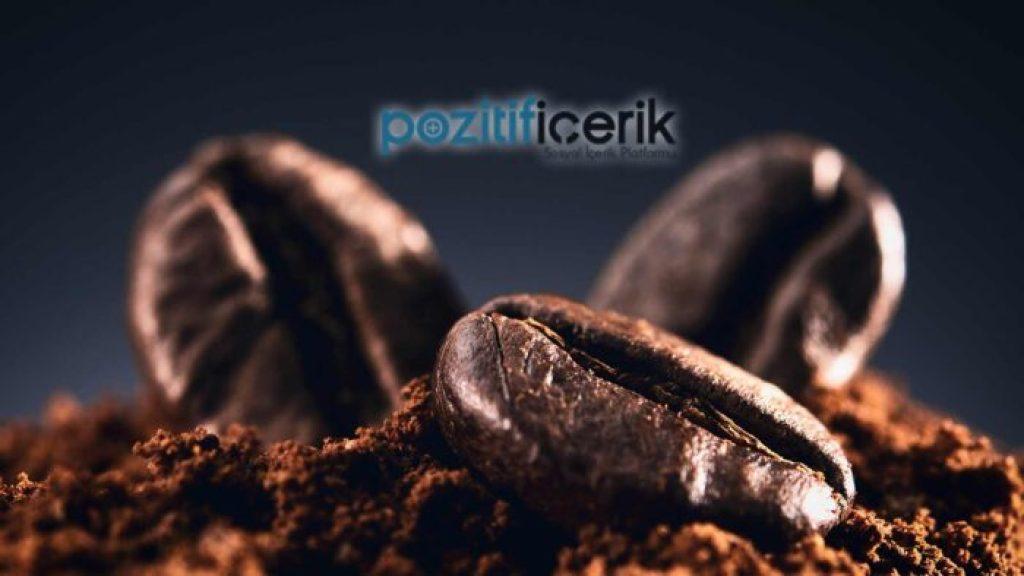Etiyopya Kahve Çekirdeği İncelemesi