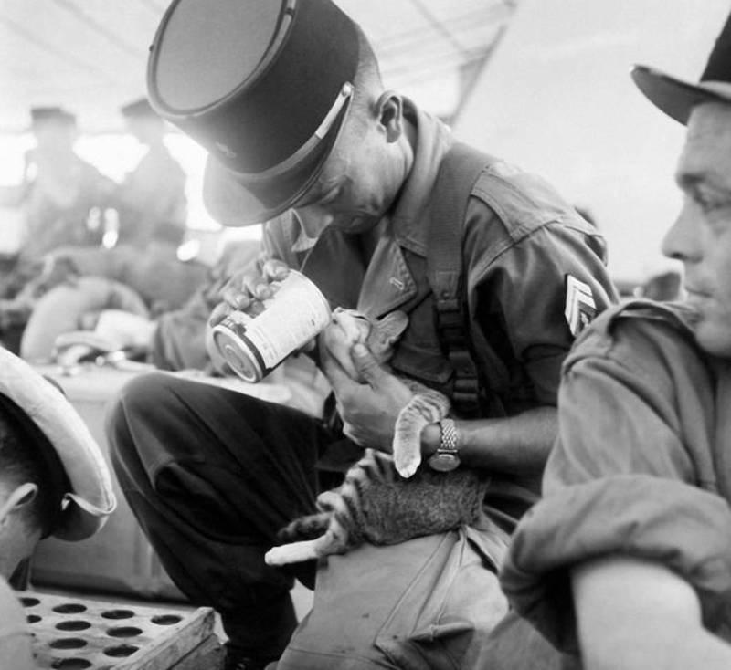 1956 г., Индокитай.