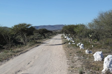best land in mineral de pozos