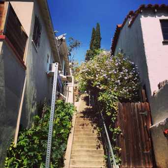 Silver Lake Los Angeles Apartments For