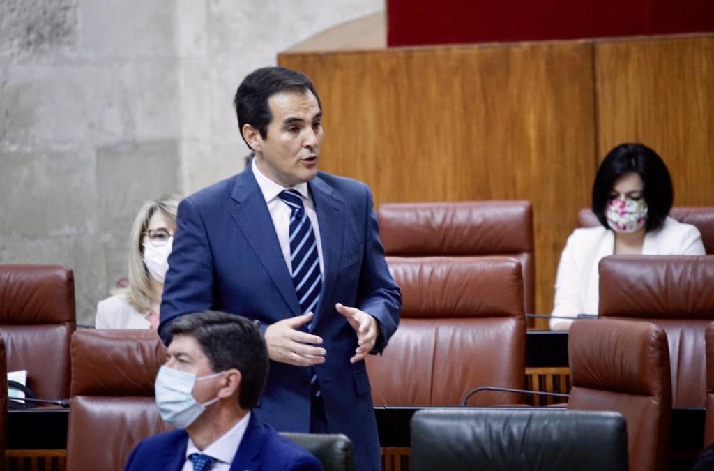 """Nieto: """"Si PSOE y AA no vuelven a la comisión, el PP seguirá con la mano tendida para dialogar la recuperación"""""""