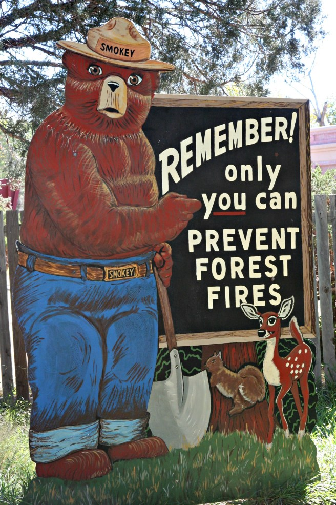 Smokey the Bear: Remember! Only you can prevent forest fires