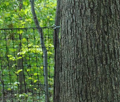 eye lags or threaded eye loops for dog fence