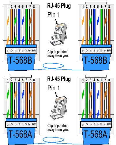 Exciting Cat 6 Connector Wiring Diagram 568a 568b Gallery - Wiring ...