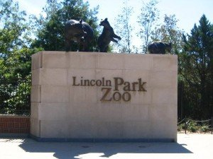 Chicago Apartments, Outdoor Activities, Lincoln Park Zoo