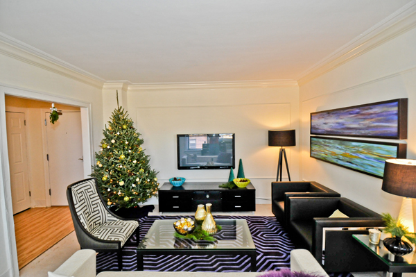 Chicago Apartments, Holiday Decorations