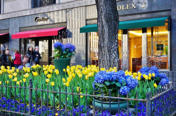 Chicago Apartments, Shopping, Magnificent Mile