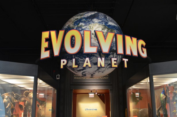 Chicago Apartments, Field Museum, Free Days, Evolving Planet