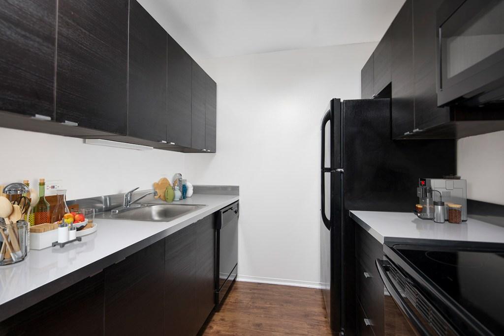 1111 N Dearborn Kitchen Interior Chicago Apartments Gold Coast - 2
