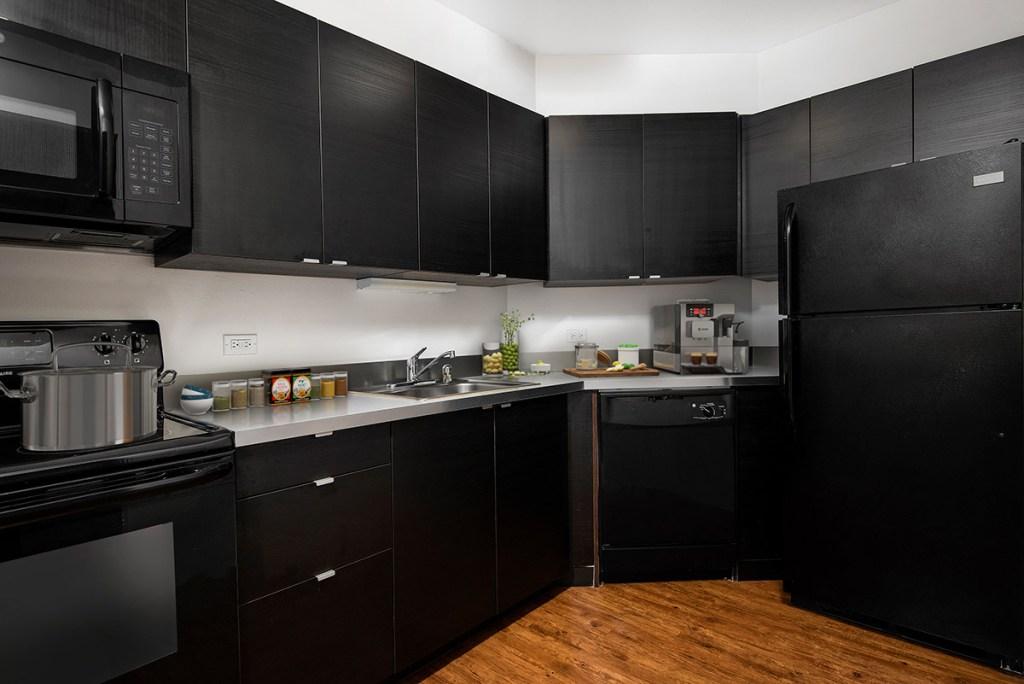 1111 N Dearborn Kitchen Interior Chicago Apartments Gold Coast - 5