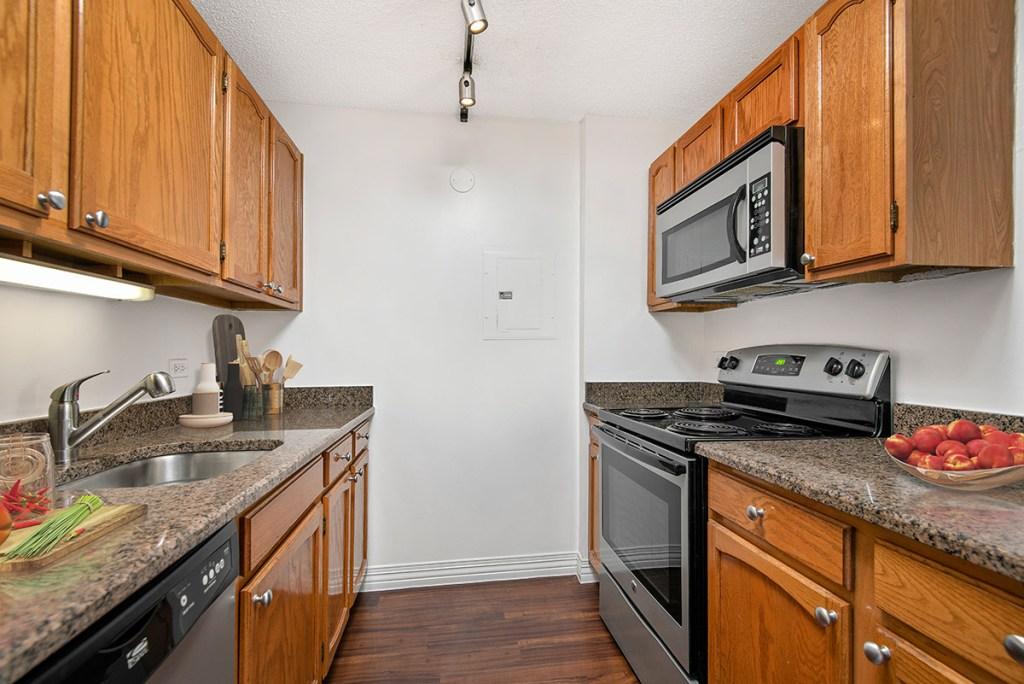 100 W Chestnut Kitchen Interior Chicago Apartments River North - 5