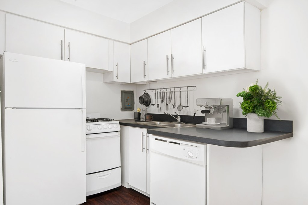 Chicago Apartments, Lincoln Park, 2630 N Hampden Kitchen