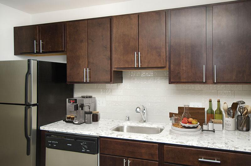 100 W Chestnut Kitchen Interior Chicago Apartments River North - 6
