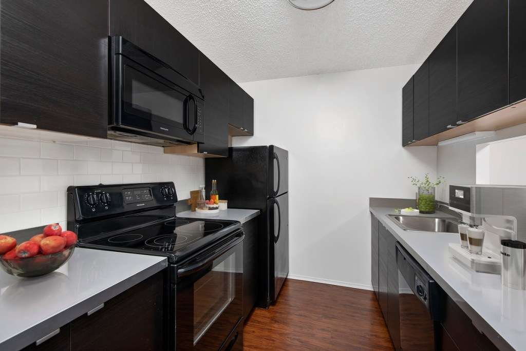 1133 N Dearborn Chicago Apartment Interior Kitchen Gold Coast 1