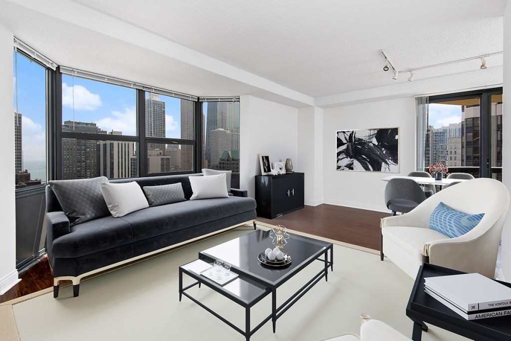 1133 N Dearborn Living Room with View Interior Chicago Apartments Gold Coast - 2