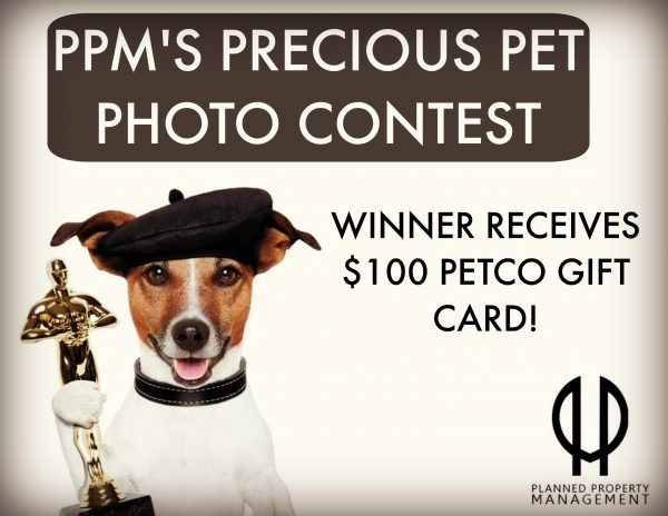 Chicago Apartments, Precious Pet Photo Contest