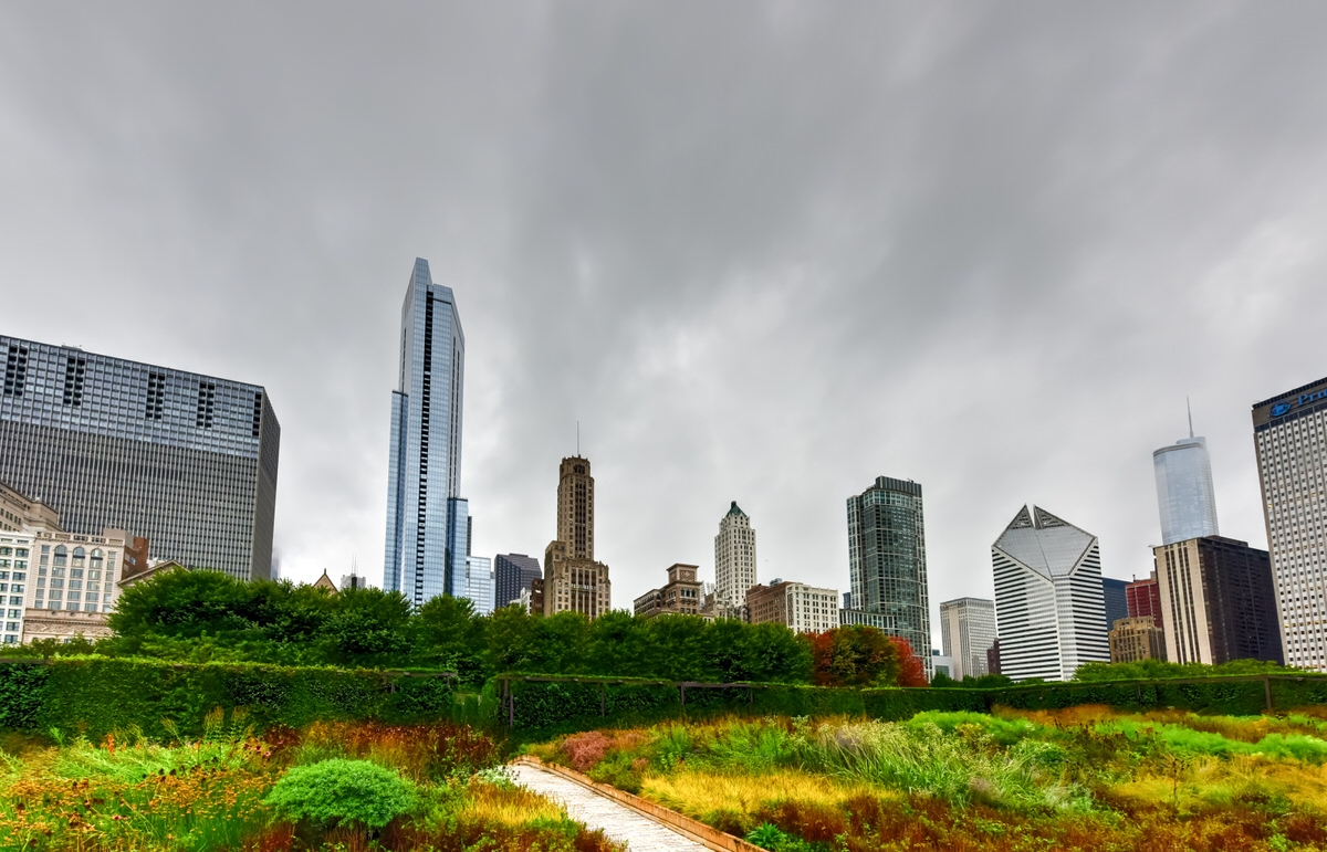 fall foliage in Chicago