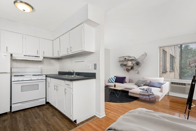 Chicago Apartments, One Bedroom vs. Studio