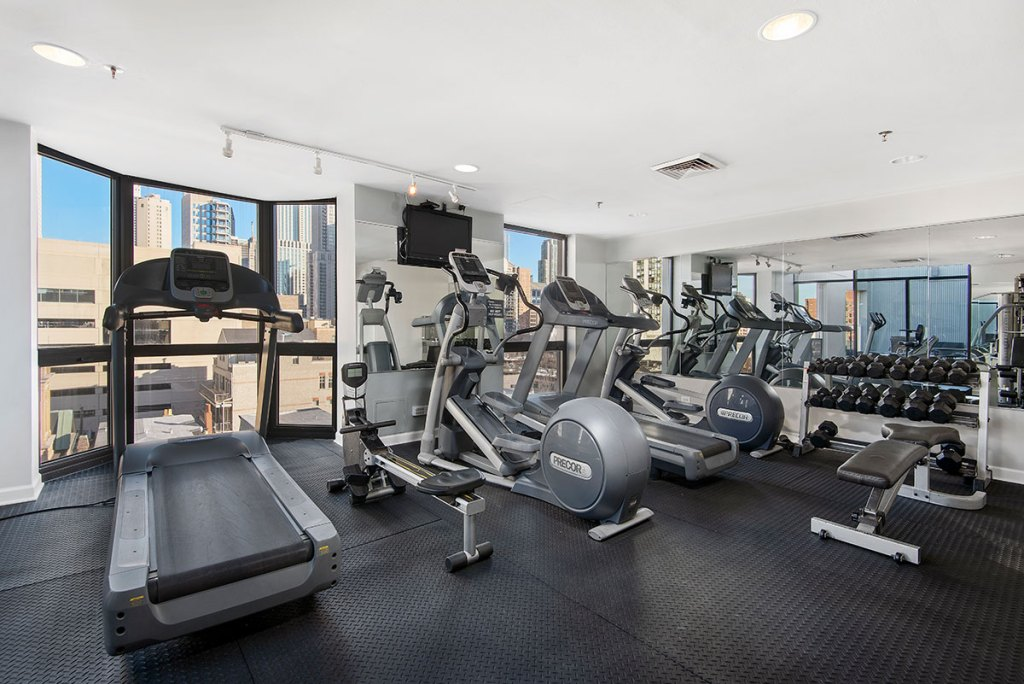 1000 N LaSalle Fitness Center with View Interior Chicago Apartments Gold Coast - 1