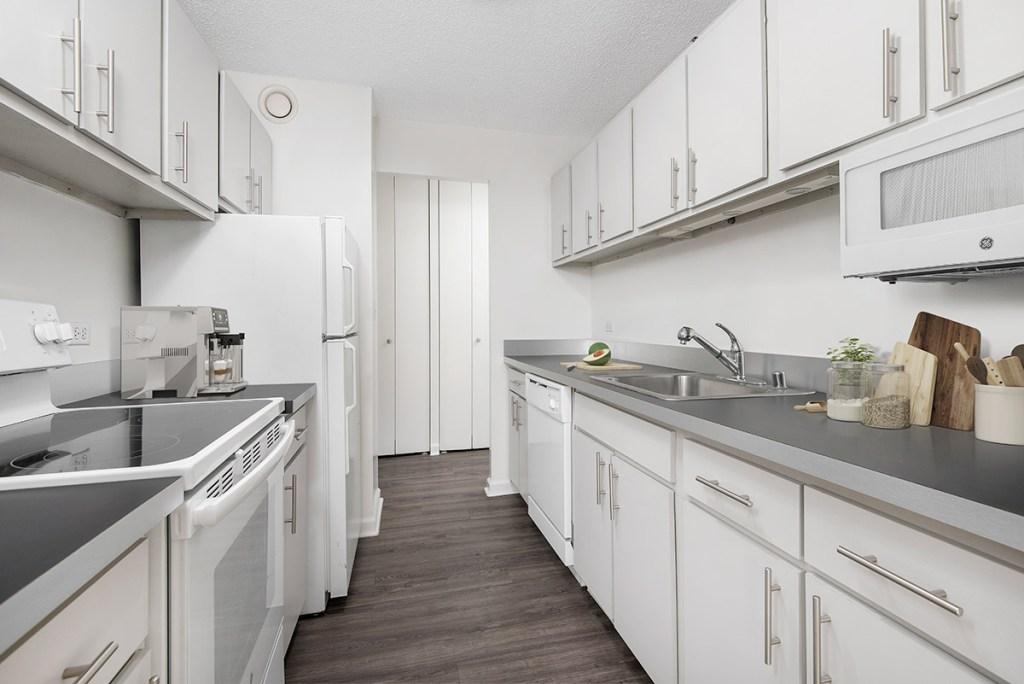 1133 N Dearborn Kitchen Interior Chicago Apartments Gold Coast - 4