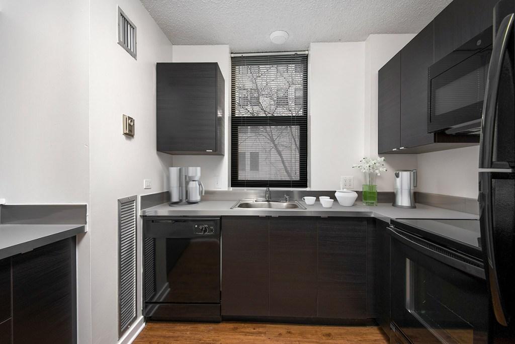1133 N Dearborn Kitchen Interior Chicago Apartments Gold Coast - 2
