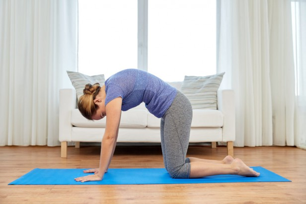 Chicago Apartments, Morning Yoga Poses, Cat/Cow Pose