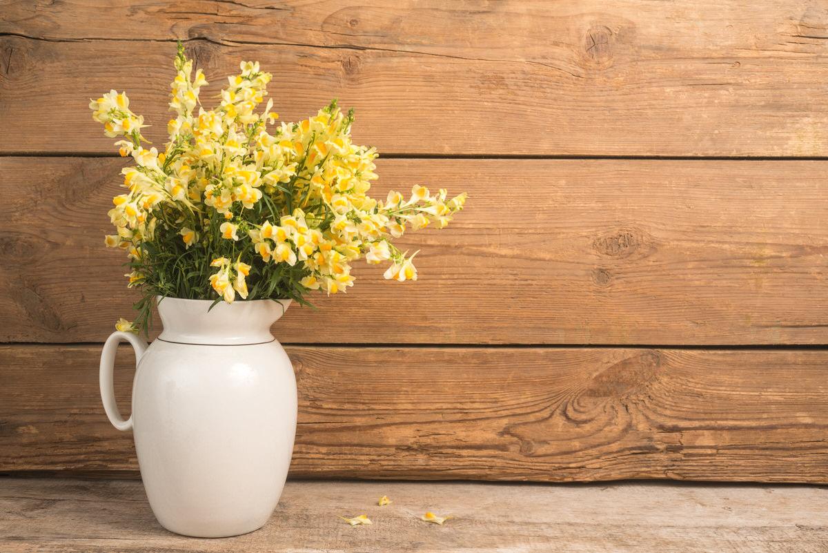 Hypoallergenic Flowers