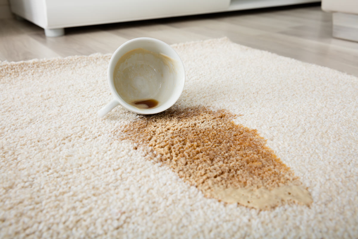 Chicago Apartments, Shaving Cream Cleaning, Removing Carpet Stains