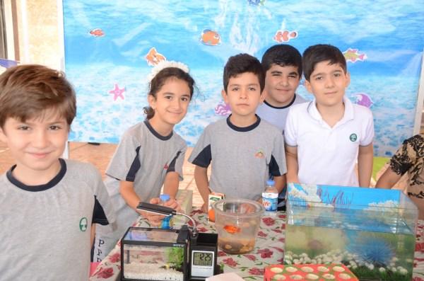 Students Sardam International School Create Aquariums