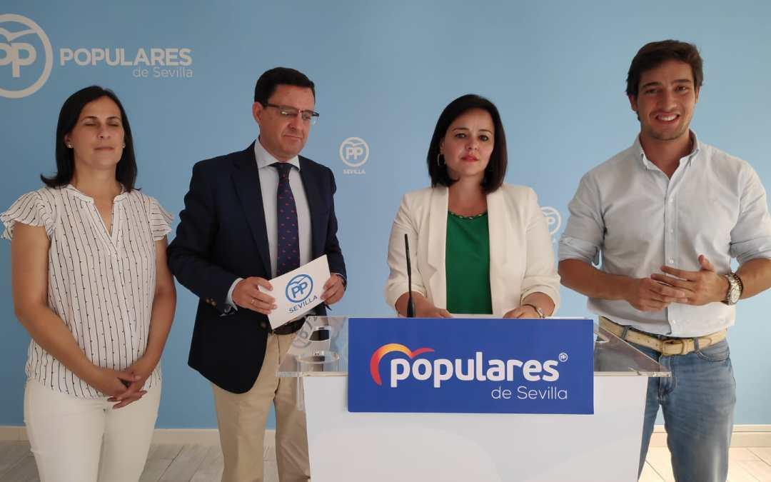 """Virginia Pérez: """"Los presupuestos andaluces recogen las demandas del PP de Sevilla de las dos últimas décadas"""""""