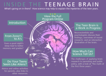 What's going on in there? How Science may help to explain the mysteries of the teen years.