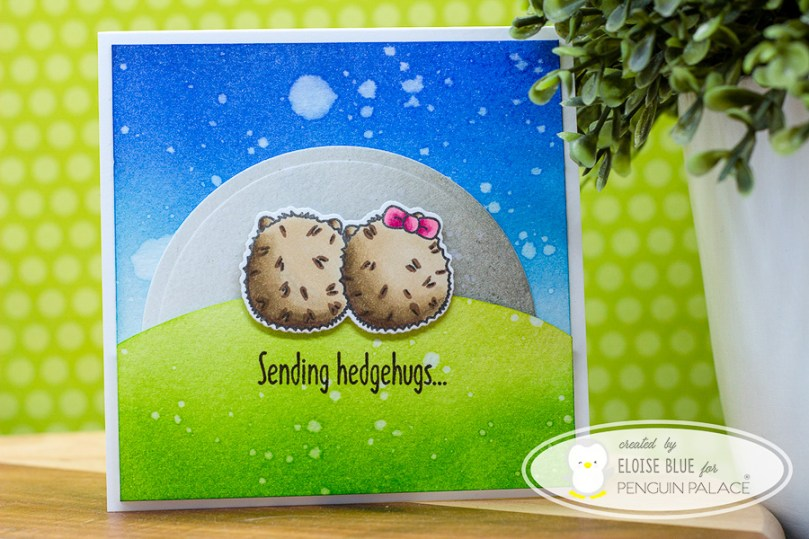 hedgehogs_blog