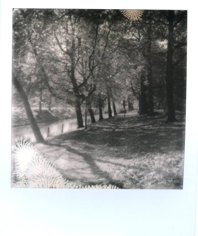 Polaroid 640 met Impossible SIlver Shade.