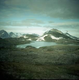 Groenland. Diana Mini met Kodak Portra 160 NC.
