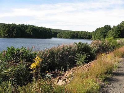 Lake Wintergreen Bass Fishing