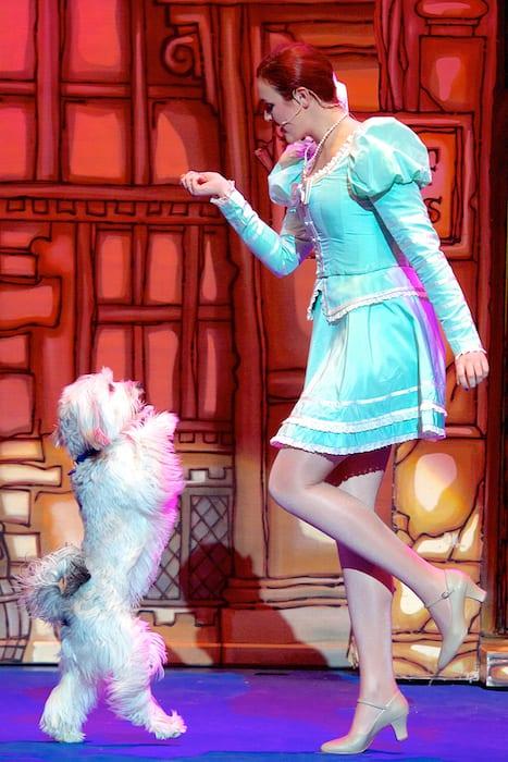 Dick Whittington Pantomime, Bristol Hippodrome