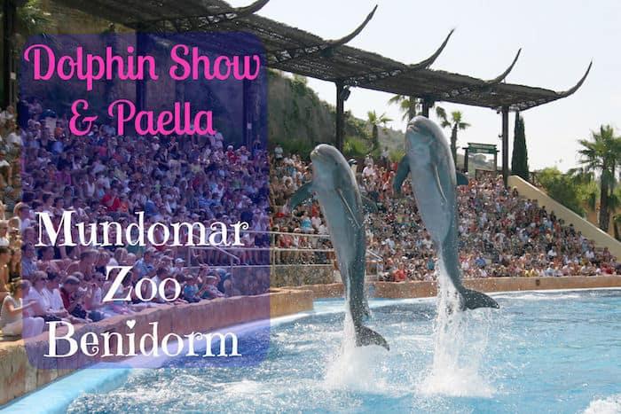 Dolphin Show Mundomar Benidorm