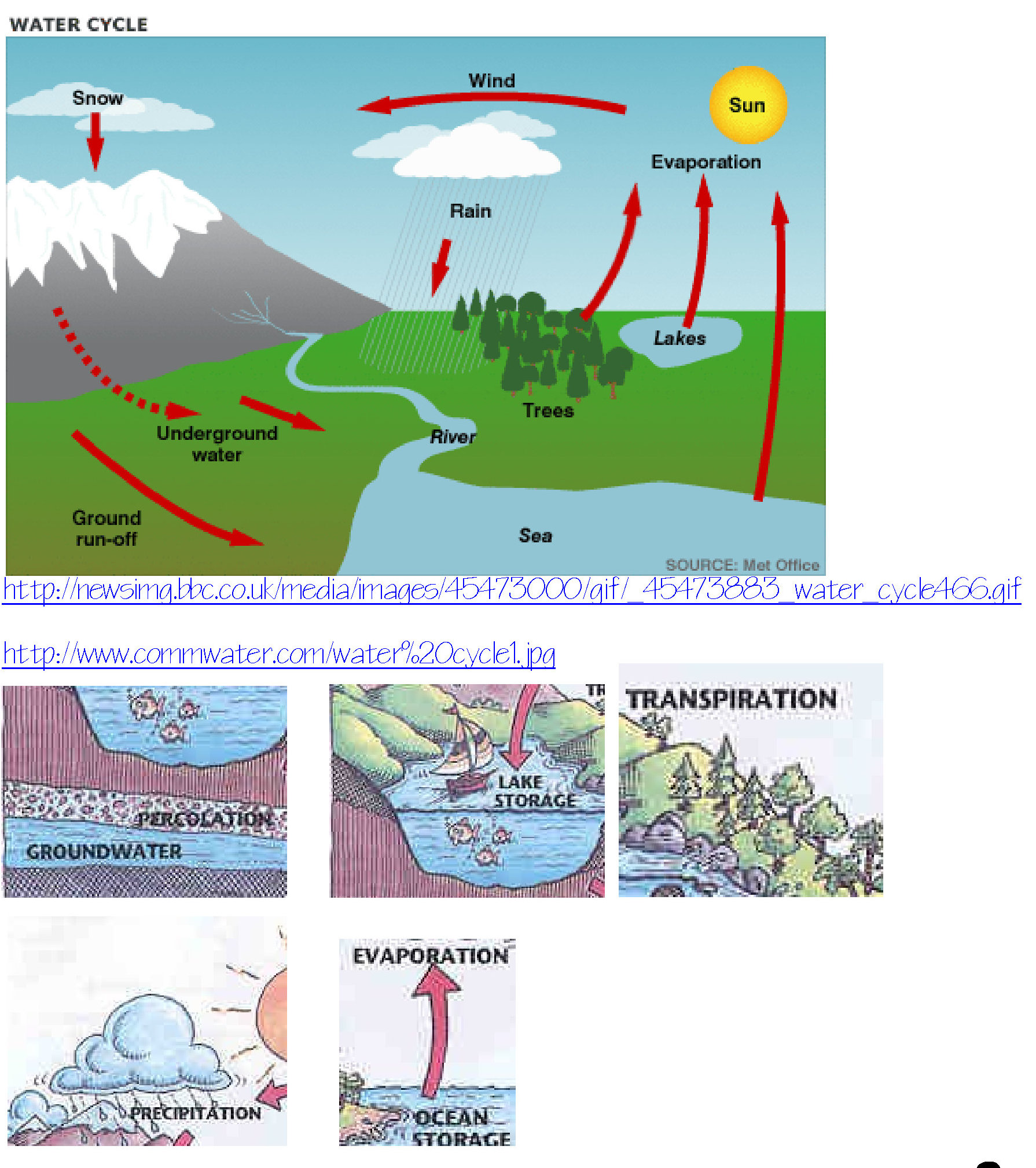 Water Cycle Wonders