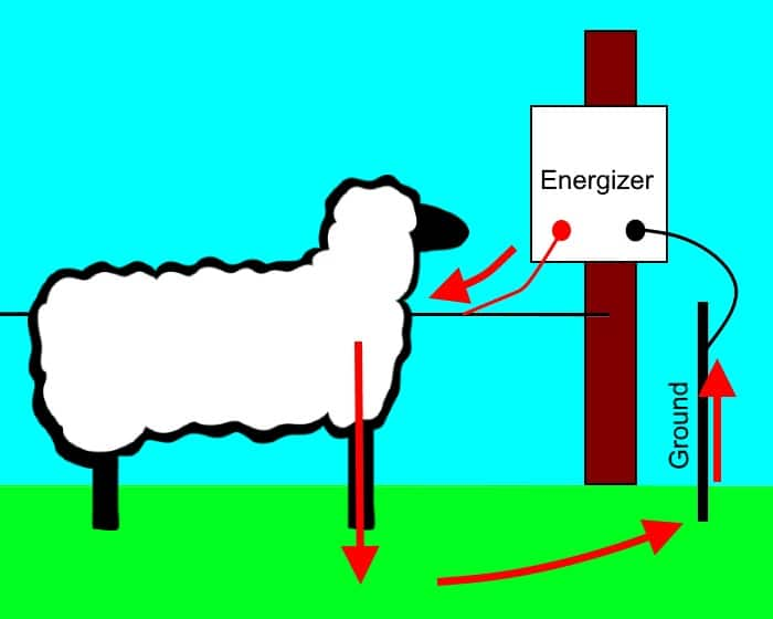 For Electricity To Flow In An Electric Fence There Must Be A Complete