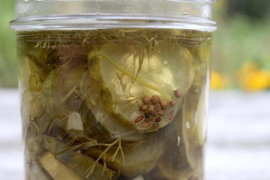 Dill Pickle Jar Closeup