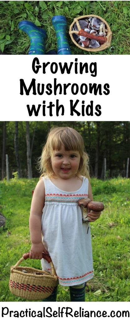 Growing Mushrooms with Kids #mushrooms #ediblemushrooms #mushroomkit #foodgardening #howtogrow #gardeningtips #homesteading #homestead #selfreliant #oystermushrooms