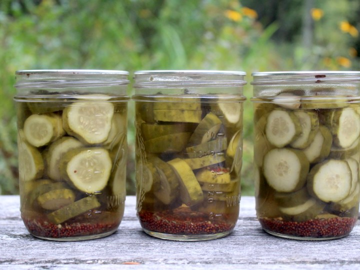 Dill Pickle Recipe For Canning