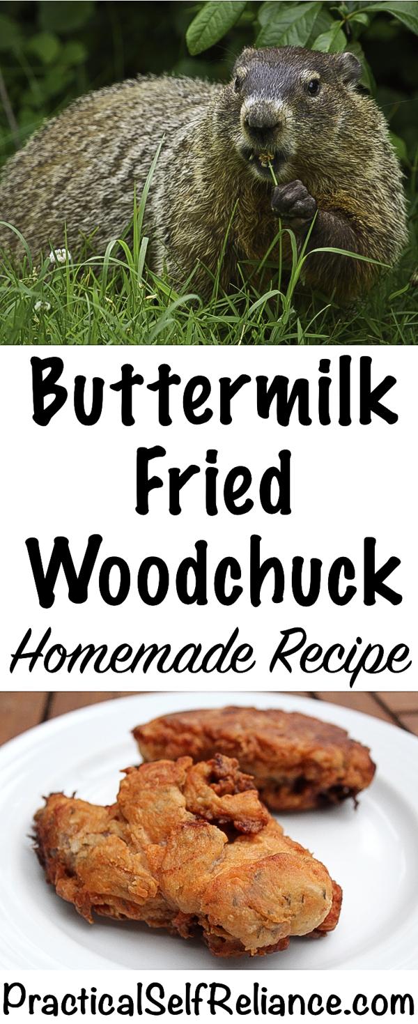 Buttermilk Fried Woodchuck (Groundhog) - Homemade Recipe #woodchuck #groundhog #recipes #friedchicken #friedfood #recipe #howtocook #wildgame #hunting #survivalist #prepper #homesteading